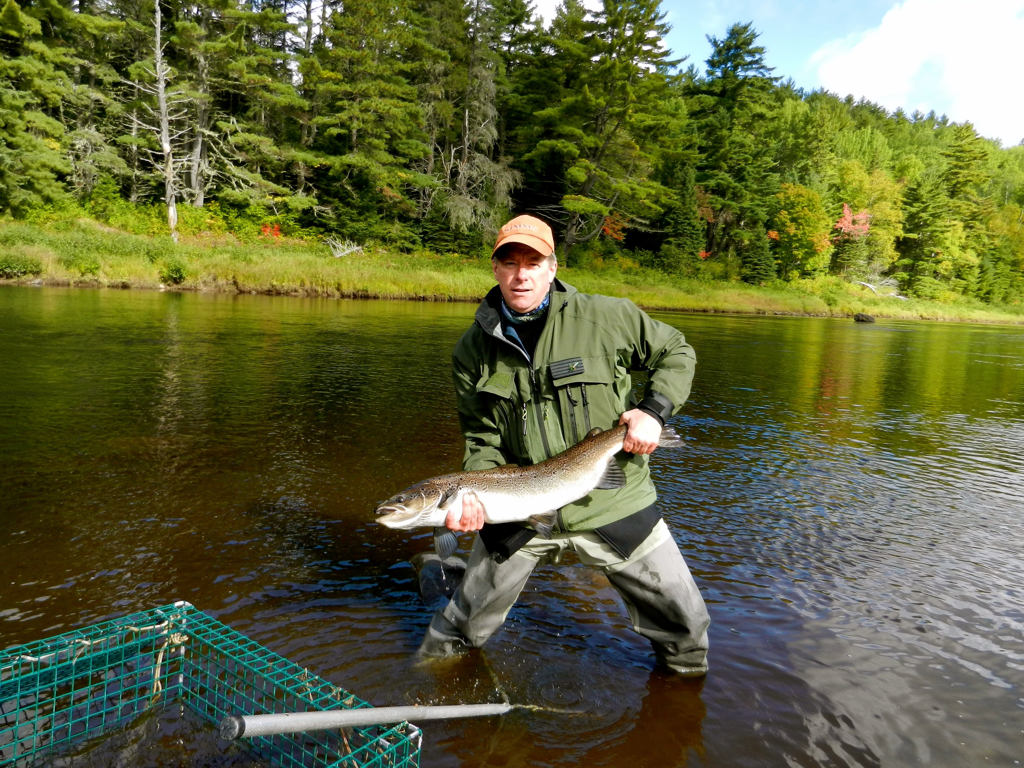 cains-river-salmon-2-2
